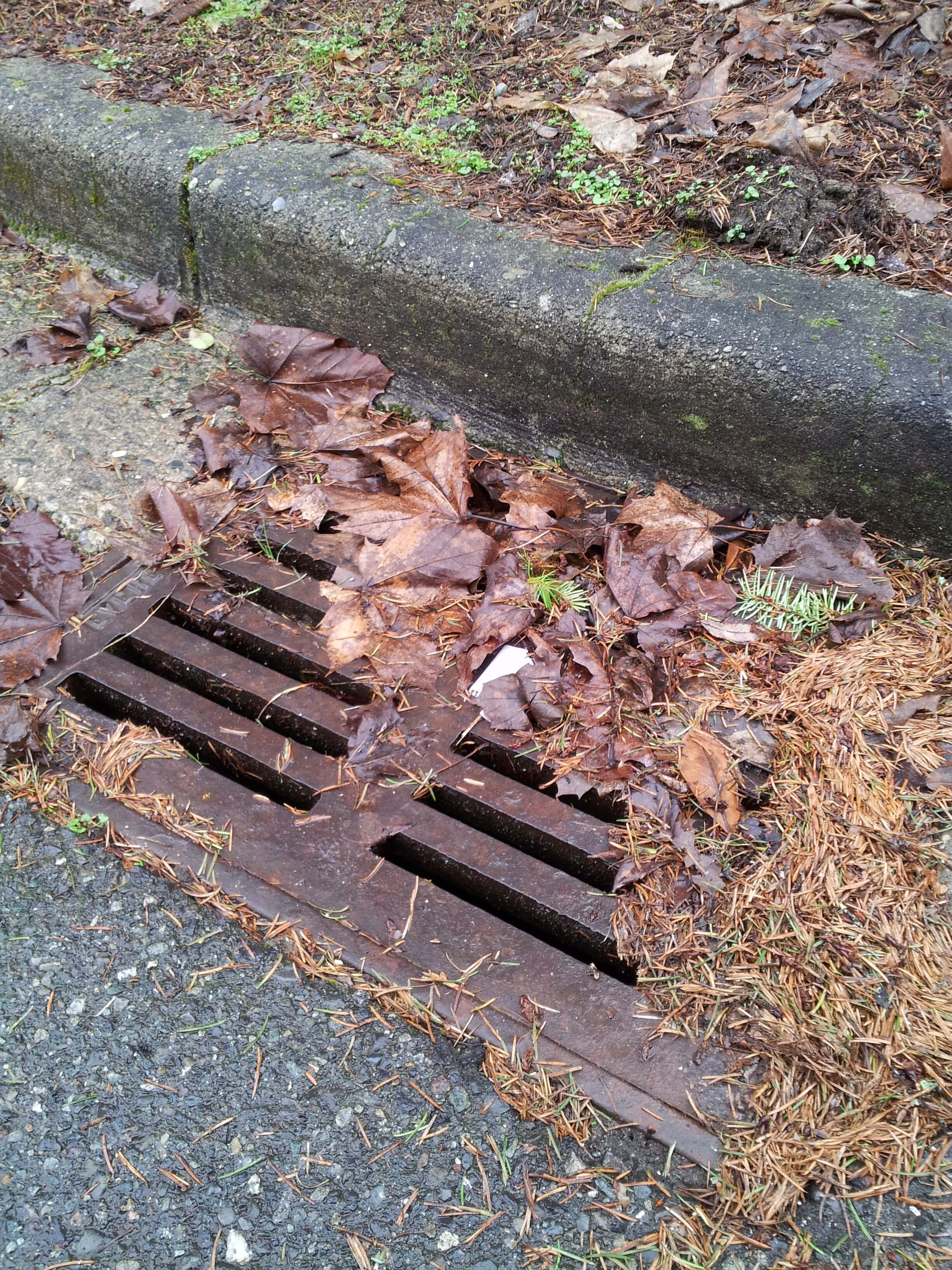 Water Sewer Backup Portland, OR Insurance Agent